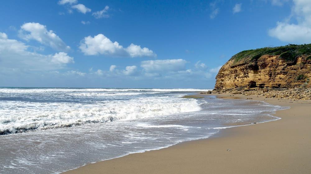 Torquay & Bells Beach