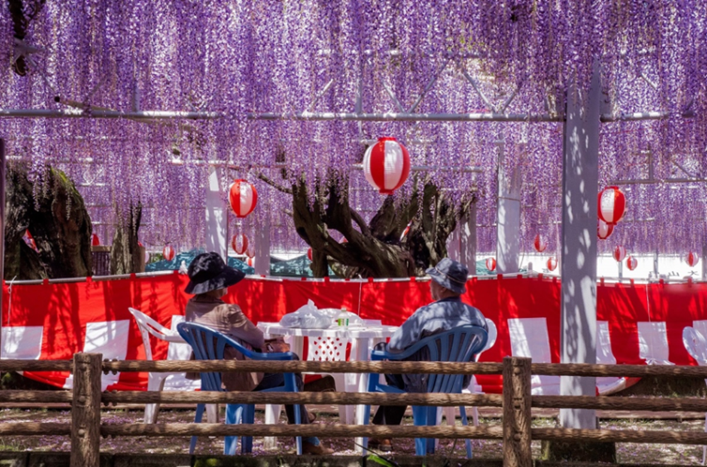 九州|熊野神社