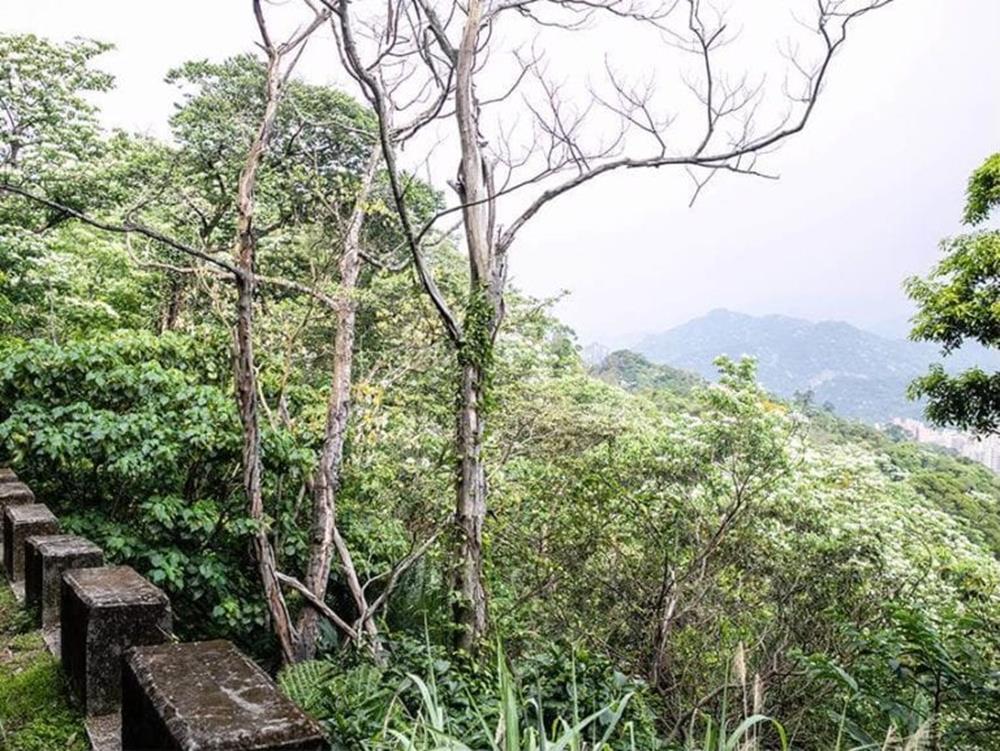 新北三峽|鳶山風景區