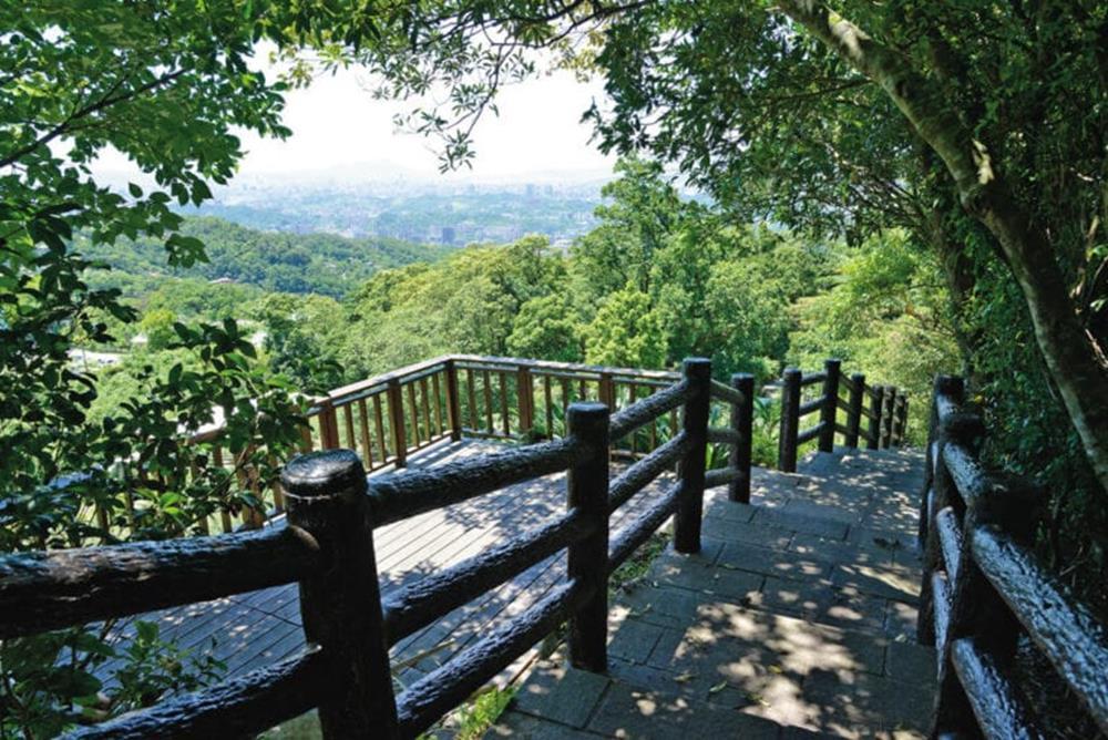 台北文山|樟樹樟湖步道