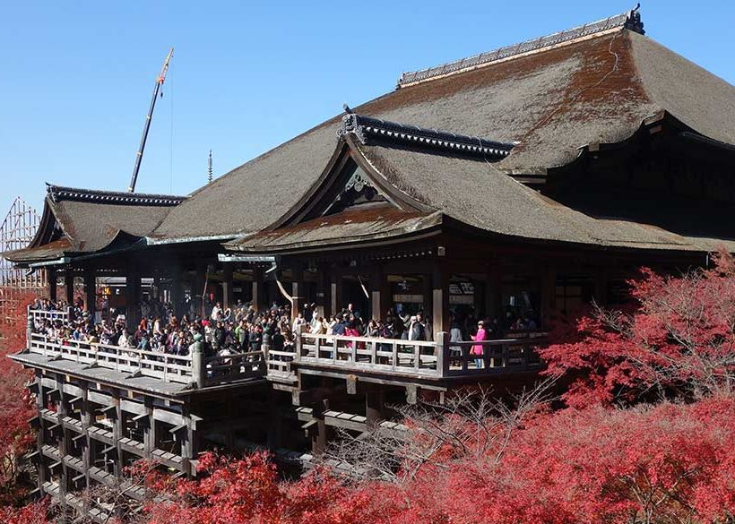 【京都住宿推薦】京都5大人氣賞楓住宿,就在楓葉景點旁!