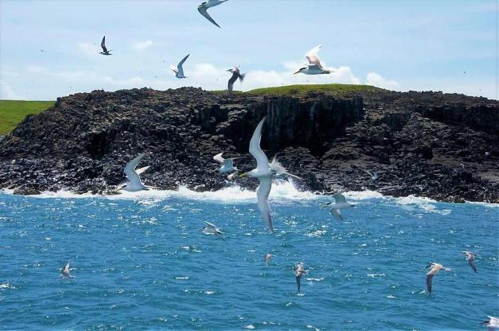 澎湖東海秘境小島