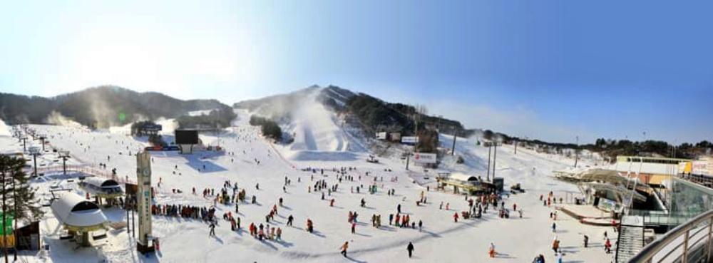 韓國-威利希利滑雪場-滑雪道2