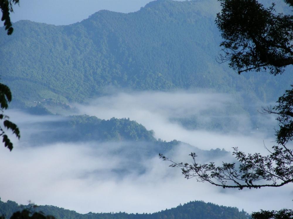 新竹-景點-野馬瞰山步道雲海1