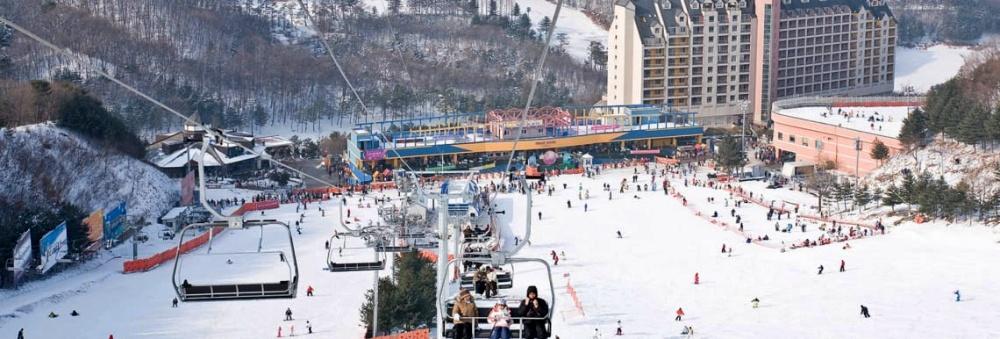韓國-滑雪-楊智度假村