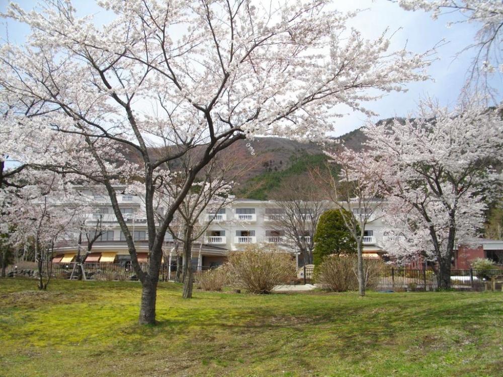 富士山-西湖-住宿-足和田-外觀