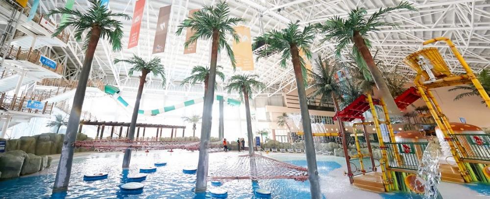 韓國-阿爾卑西亞滑雪度假村-泳池