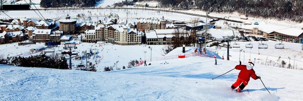 韓國-阿爾卑西亞滑雪度假村-滑雪道2