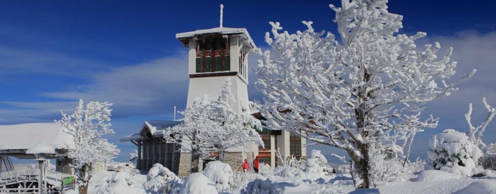 韓國-龍平滑雪度假村-滑雪場