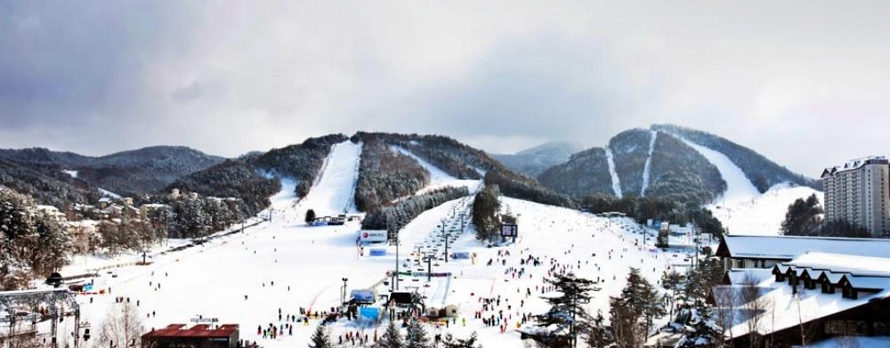 韓國-龍平滑雪度假村-滑雪道2
