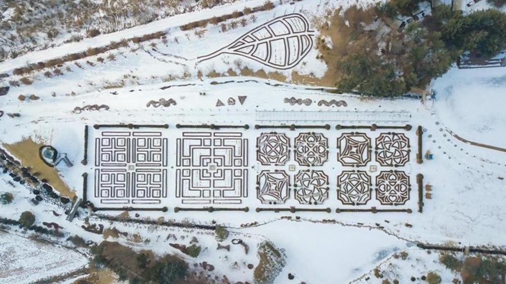 韓國-滑雪-度假村-住宿-平昌肯辛頓飯店-花園