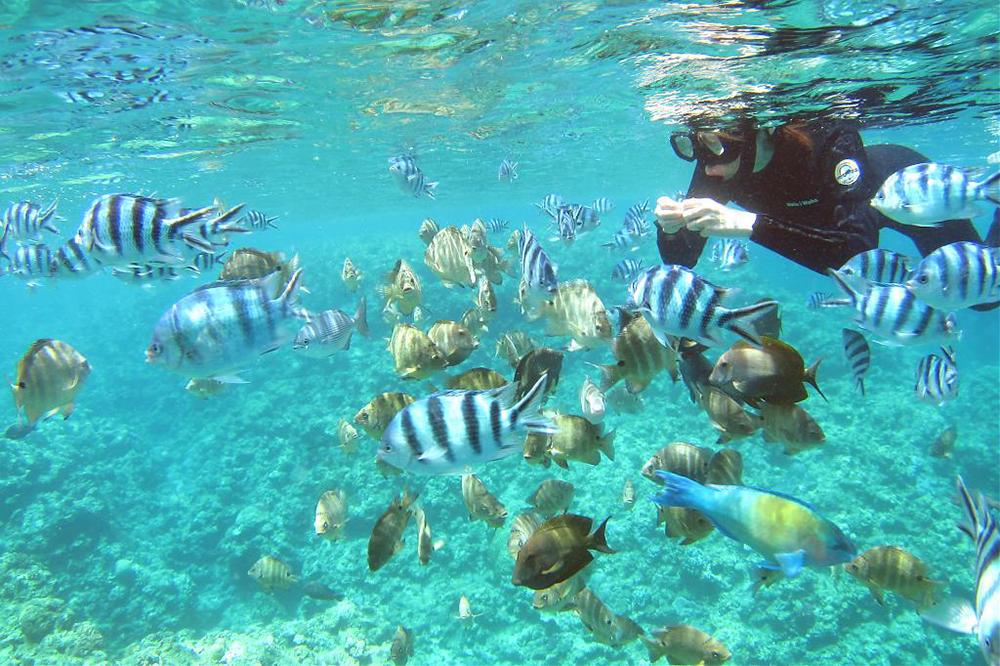 沖繩-藍洞-浮潛
