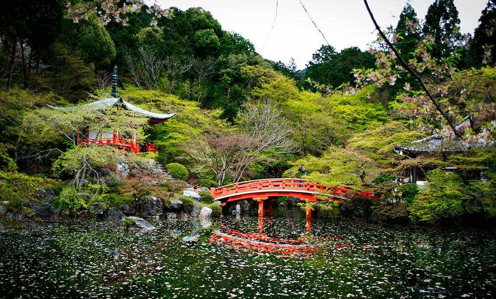 京都-醍醐寺