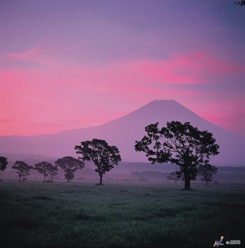 富士山-朝霧高原-滑翔傘
