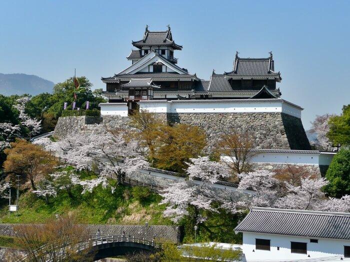 京都賞櫻景點-福知山城