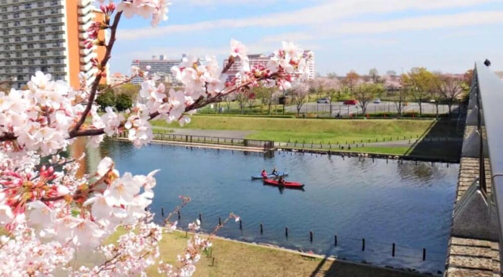 東京櫻花-隅田公園