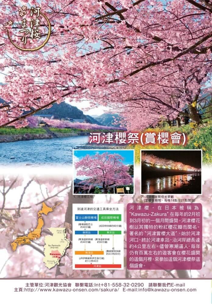 靜岡-河津櫻祭-2020