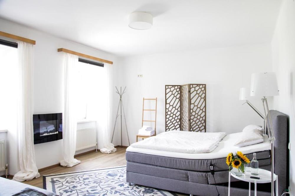 哈爾施塔特湖濱公寓-湖景雙人間-帶共用浴室