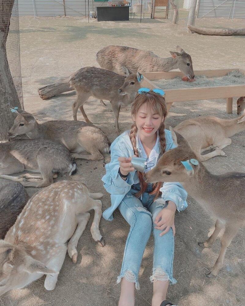 小琉球景點-鹿粼梅花鹿園區
