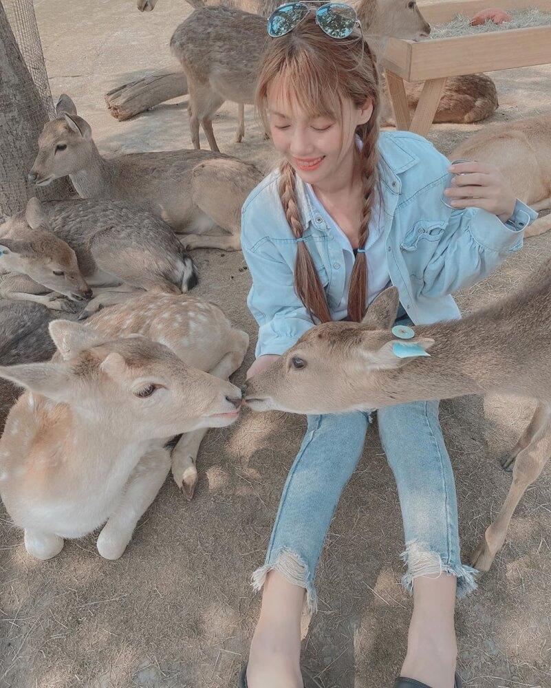 小琉球-鹿粼梅花鹿園區
