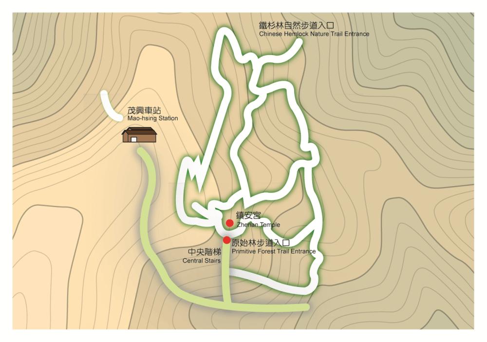 太平山景點-檜木林步道