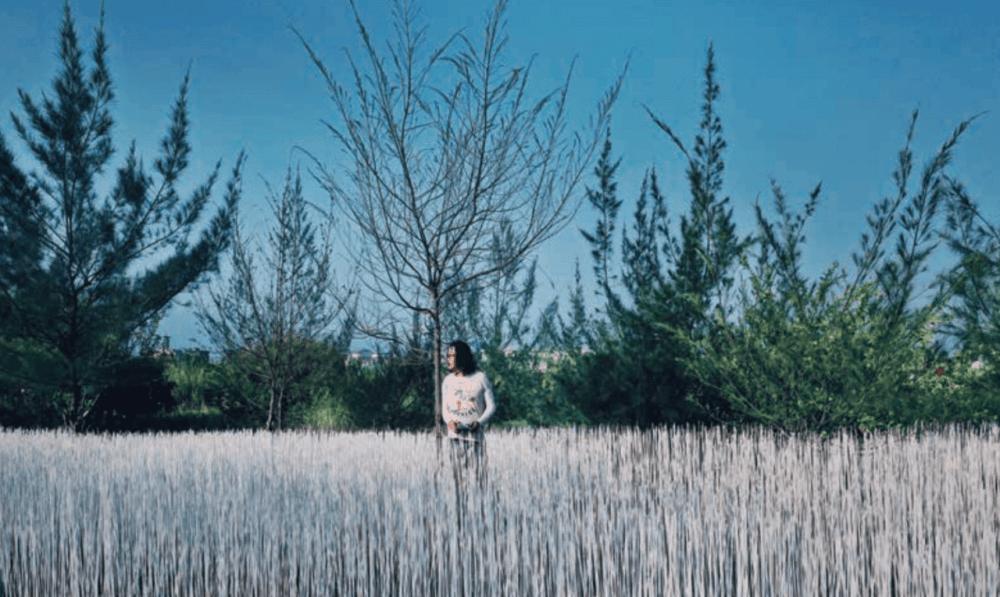 油桐花景點-2020客家桐花季-地景藝術