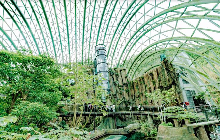 台北週末景點-動物園穿山甲館
