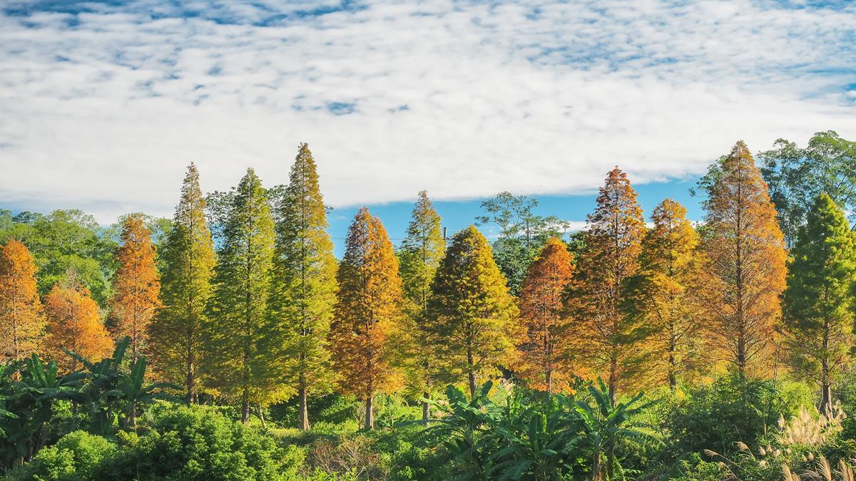 【旅「型」測驗】秋天就是要旅行!從旅行風格測出最適合你的飯店類型